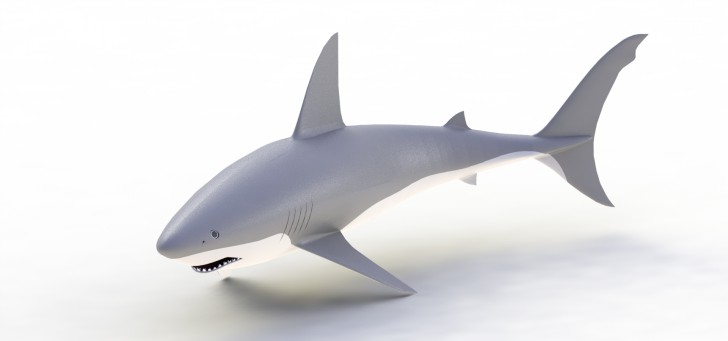 Testing an Anti-Shark Cage in SOLIDWORKS Simulation
