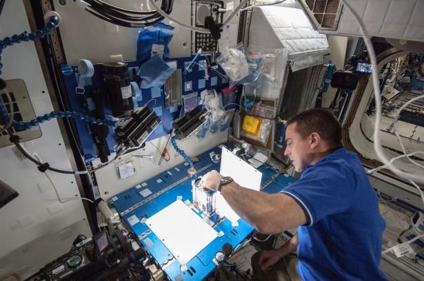 Expedition 36 flight engineer Chris Cassidy