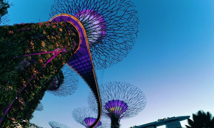 New Meets Nature: Can Modern Engineering Preserve the Natural World?