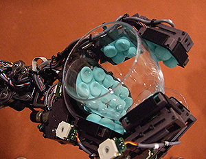 Descubra a sensibilidade robótica