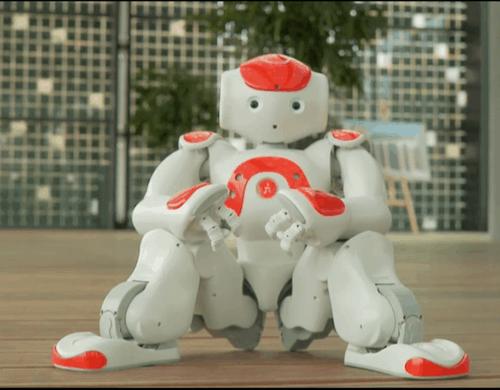 Aldebaran_Robotics_1