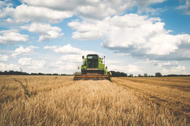 Felder, Erträge und intelligenter Landbau: Die technische Zukunft der Landwirtschaft_Mähdrescher