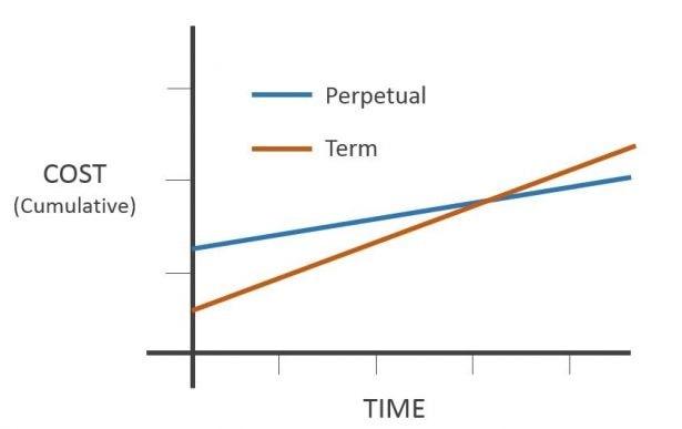 Typischer Kostenvergleich zwischen Dauer- und Mietlizenz in der Software-Branche