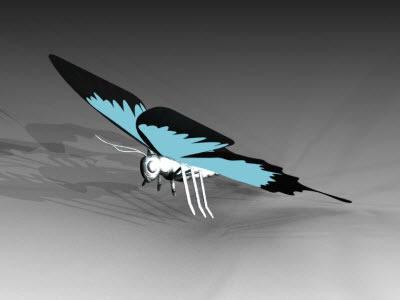 Butterfly model 3D