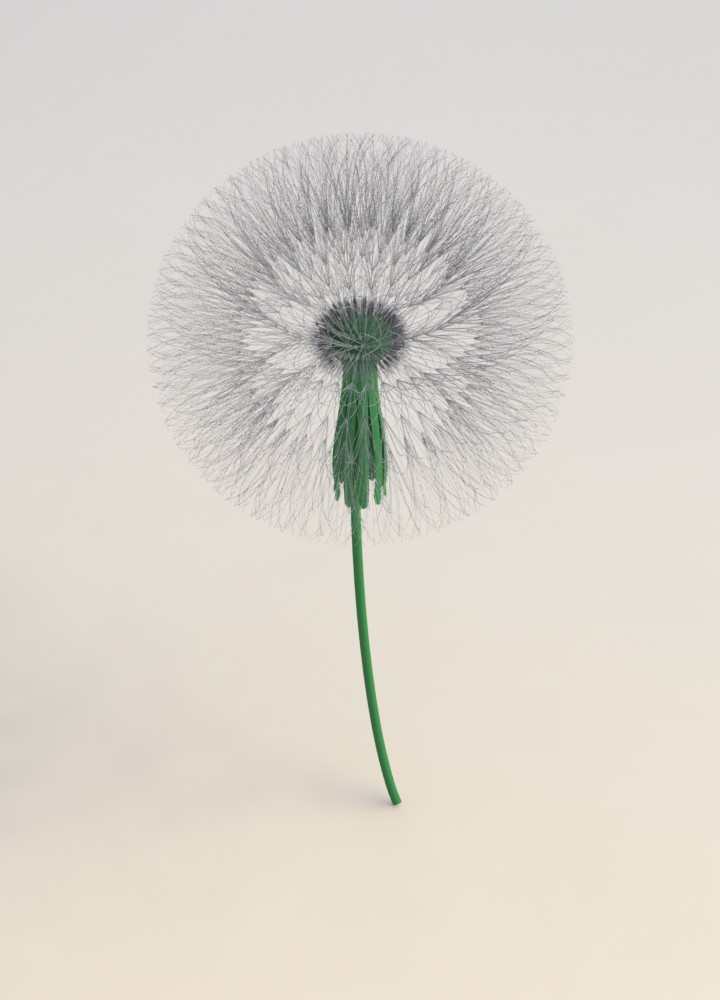 Dandelion Flower in SolidWorks