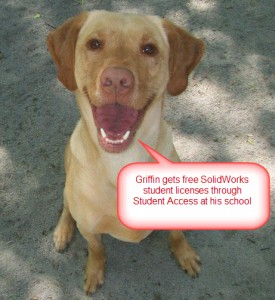 Griffin  Alia-Yellow American Lab Student Access - Copy