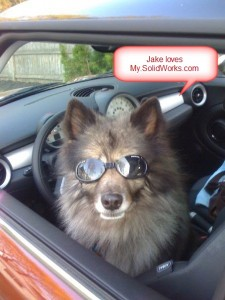 JakeSunGlasses Keeshond From John My.SolidWorks - Copy