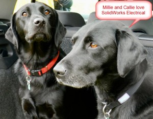 Millie and Callie black labradors simon SolidWorks Electrical