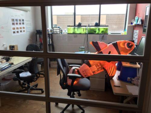 SOLIDWORKS Entrepreneur: AlphaLab Gear Provides a ...