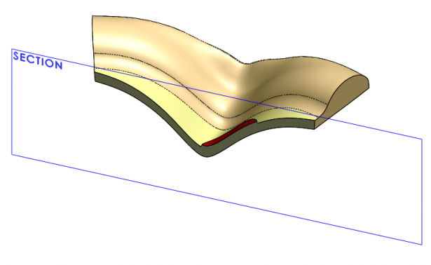 3D Model of Crimped Pizza with Cross Section