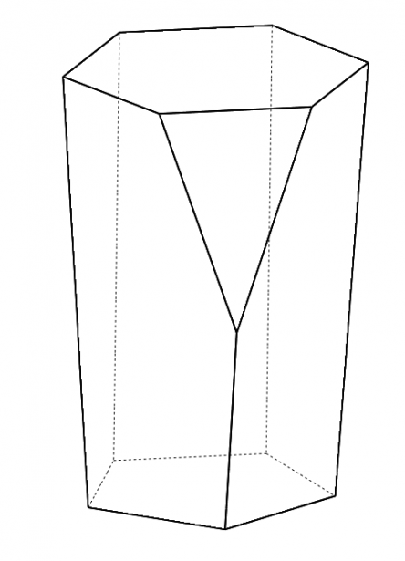 Scutoid Picture