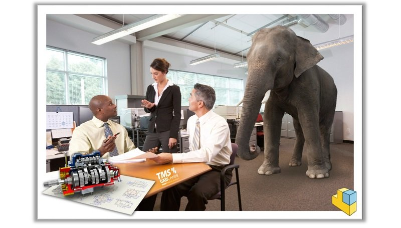 The Elephant In The Room Large Assemblies